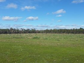 Lot 783 Pile Road, Forest Hill