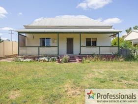 * 55 PALMER ROAD, Collie