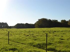 Lot 1231,  Gingin Brook Road, Muckenburra