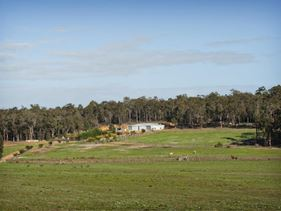 1153 Bramley River Road, Osmington