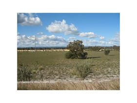 Lot 215 AMARILLO DRIVE,, Karnup