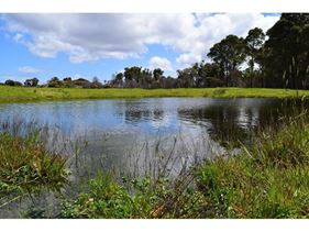 Lot 8871 Jay Road, Northcliffe