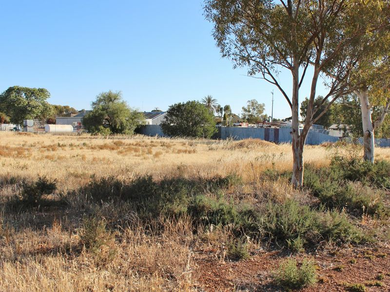 Lot 23 Leake St, Doodlakine