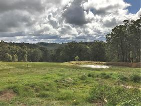 1014 (Lot 501) Charley Creek Road, Thomson Brook