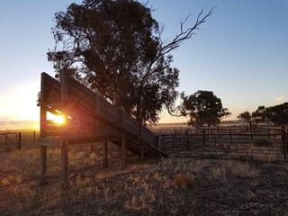 Lot 1 & 3, 927 Solomon Road, Quairading