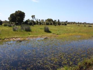 Lot 123 Gingin Brook Road, Muckenburra