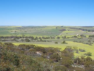 435 Tootbardie Rd, Warradarge via, Badgingarra